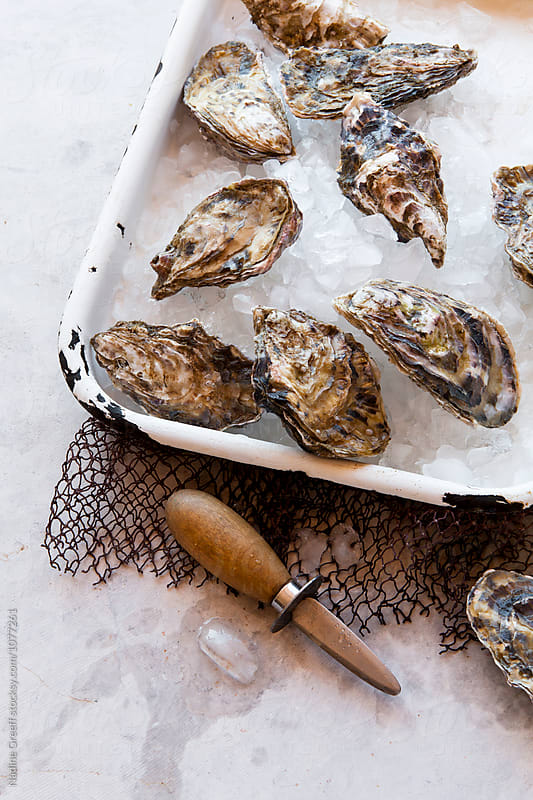 Fresh oysters on ice with oyster knife by Nadine Greeff for Stocksy United