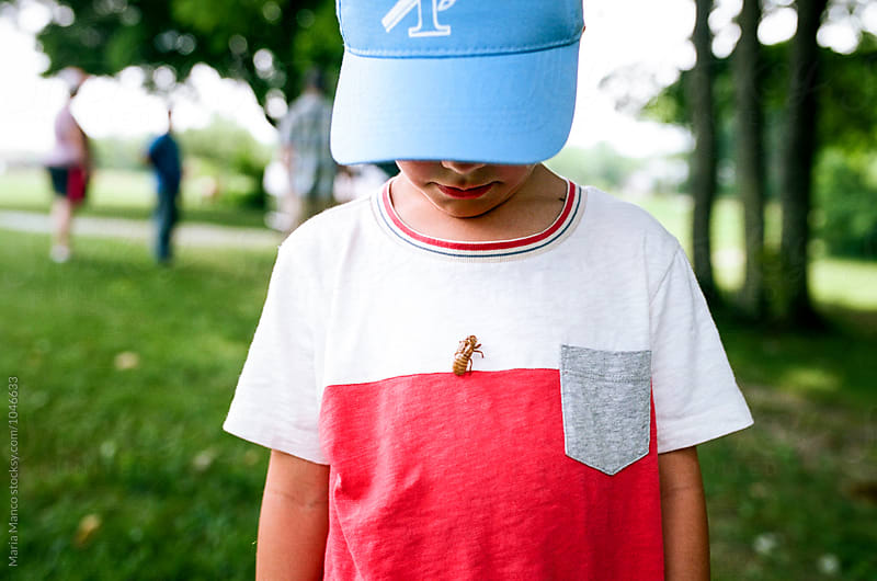 boy with cicada shell on shirt by Maria Manco for Stocksy United