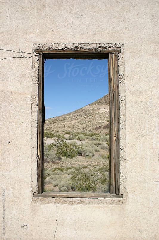 Window by Hillary Fox for Stocksy United