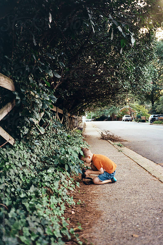 Young boy taking close up pictures of leaves on the sidewalk by Cameron Whitman for Stocksy United