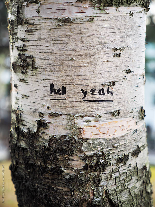 Hell yeah written on a tree by Juri Pozzi for Stocksy United