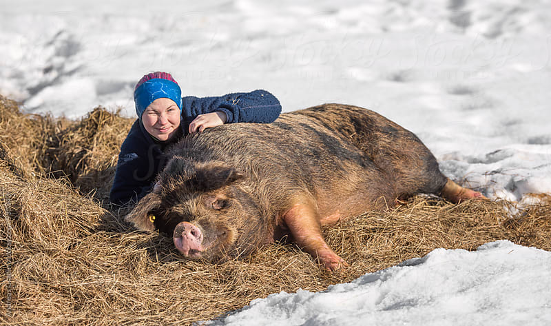 Female farmer with her pigs on a winter farm by Andreas Gradin for Stocksy United