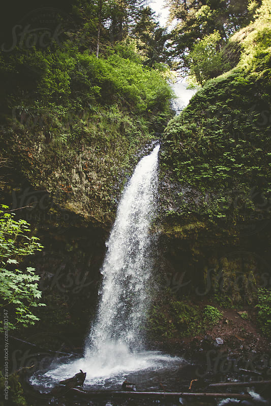 Upper Latourell Falls, Columbia River Gorge by michela ravasio for Stocksy United