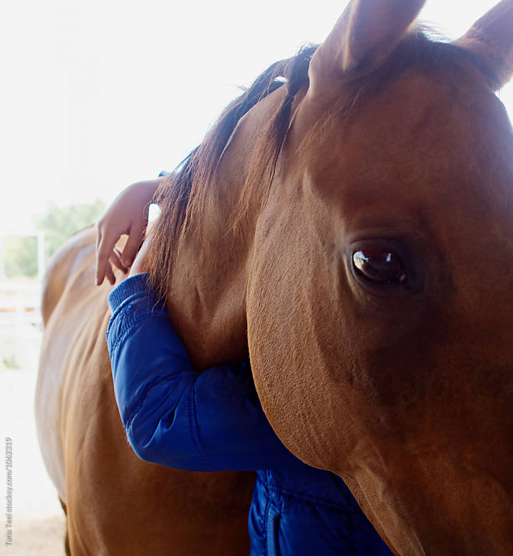 girl wraps arms around horse's neck by Tana Teel for Stocksy United