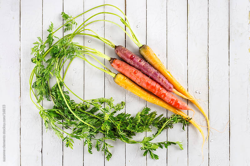 Fresh Organic Rainbow Carrots by suzanne clements for Stocksy United