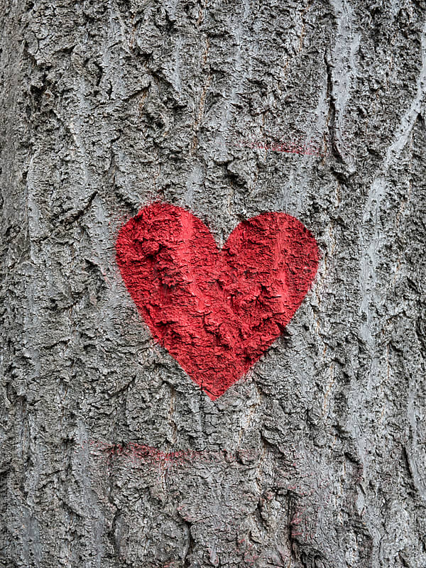 Red heart painted on tree by Pixel Stories for Stocksy United