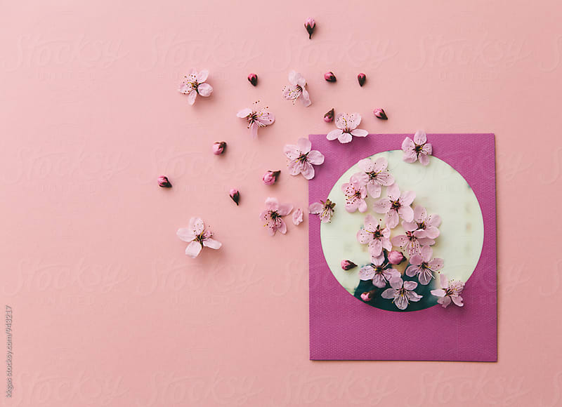 Polaroid print on pink background with pink flowers by kkgas for Stocksy United