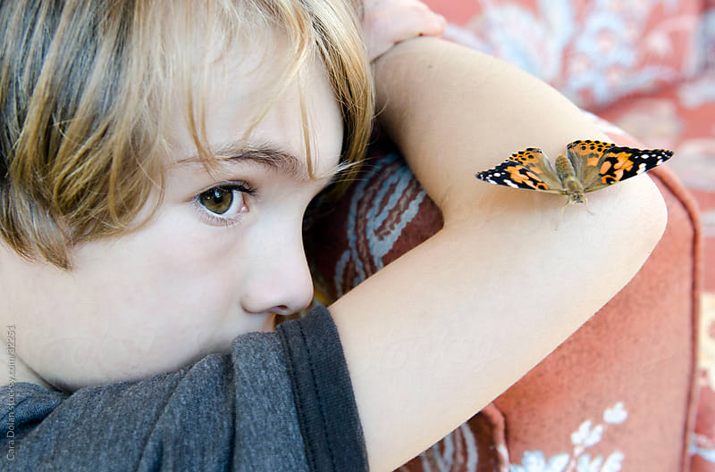 Boy has painted lady butterfly resting on his arm by Cara Slifka for Stocksy United