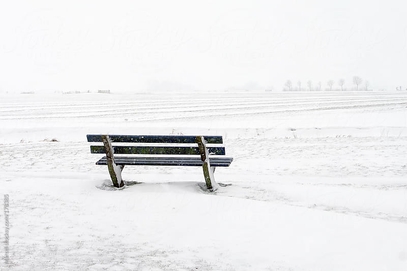 Bench in the snow by Marcel for Stocksy United