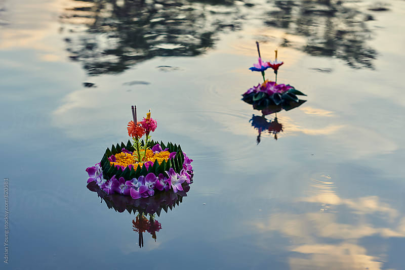 Krathongs Floating On A Pond During Loi Krathong Festival by Adrian Young for Stocksy United