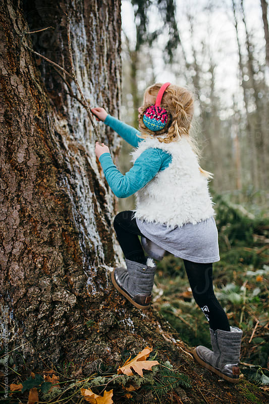 Little Girl Climbing a Pine Tree with Sticks by Amanda Voelker for Stocksy United
