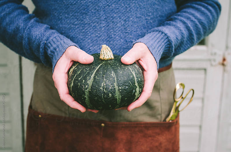 Hands holding an autumn squash by Helen Rushbrook for Stocksy United