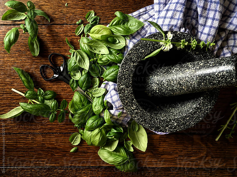 Fresh basil and a pestle and mortar on wooden background. by Darren Muir for Stocksy United