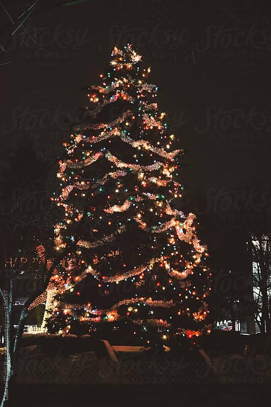 Christmas Tree by Gabriel (Gabi) Bucataru for Stocksy United