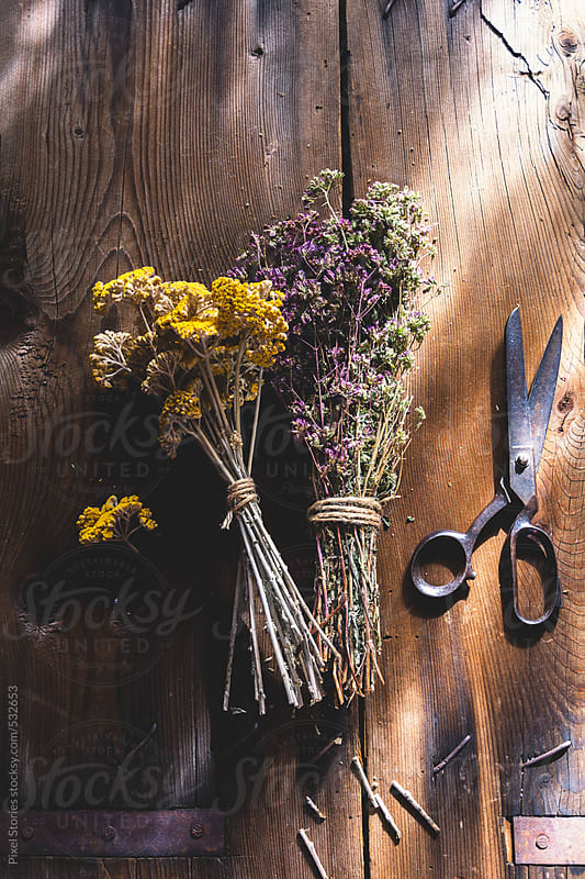 Dried herbs on wooden table by Pixel Stories for Stocksy United