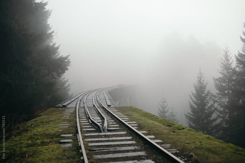 Foggy second trestle 2 by Kim Jay for Stocksy United