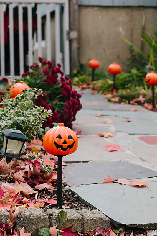 Pumpkin jack-o-lantern lights lining sidewalk surrounded by leaves outside. by J Danielle Wehunt for Stocksy United
