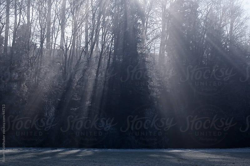 Blue light by Robert Kohlhuber for Stocksy United