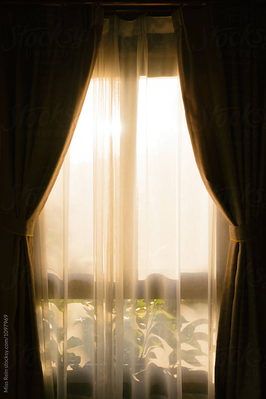 Curtains with sun and leaves by Miss Rein for Stocksy United