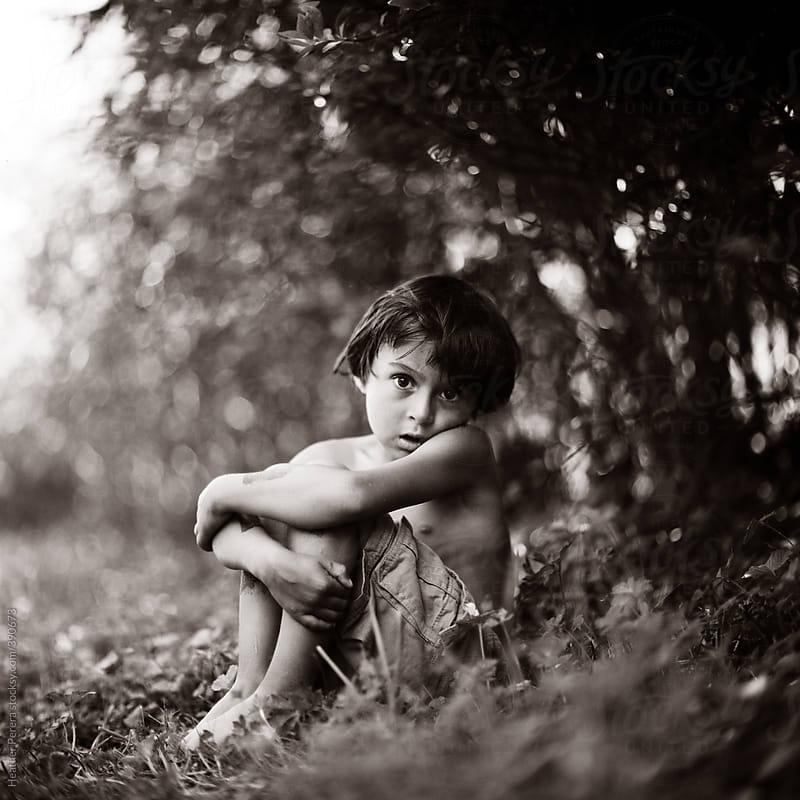 boy in blueberry field by Heather Perera for Stocksy United