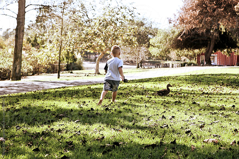 Boy Running After Duck At A Park by Dina Giangregorio for Stocksy United