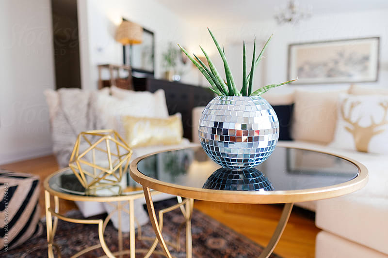 DIY'd glitter ball planter with succulent inside by kelli kim for Stocksy United