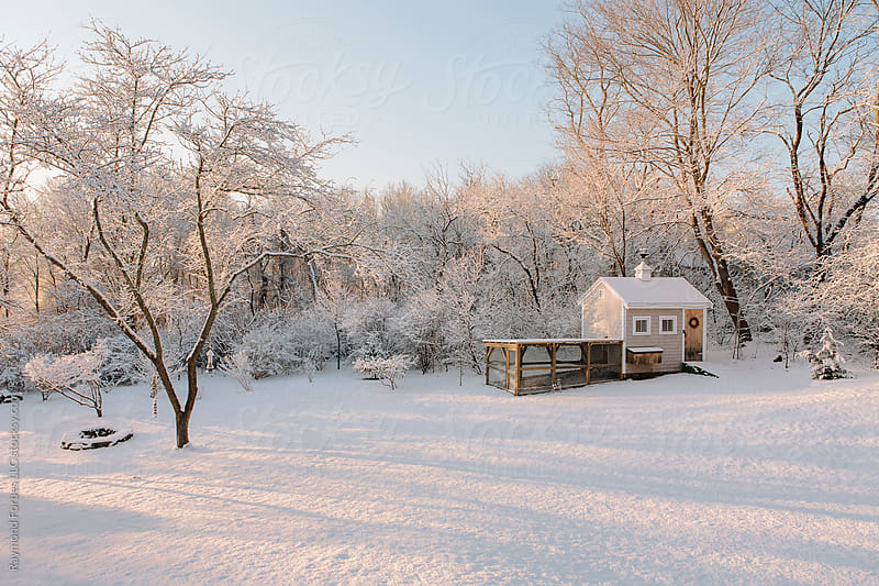 Chicken Coop after winter Storm by Raymond Forbes LLC for Stocksy United