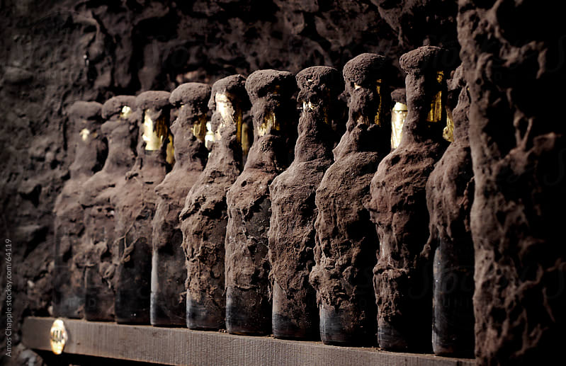 Old Tokaji wines coated in cellar mould by Amos Chapple for Stocksy United