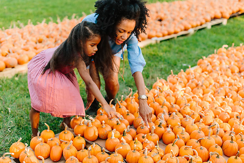 Picking out mini pumpkins  by Kristen Curette Hines for Stocksy United