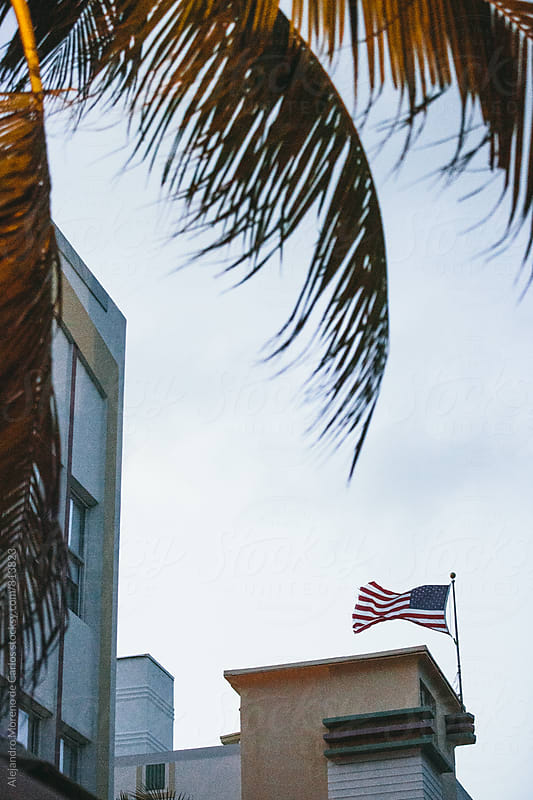View of a building and an american flag flying with palm tree leaves in front by Alejandro Moreno de Carlos for Stocksy United