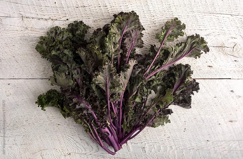 Organic Purple Kale by Jeff Wasserman for Stocksy United