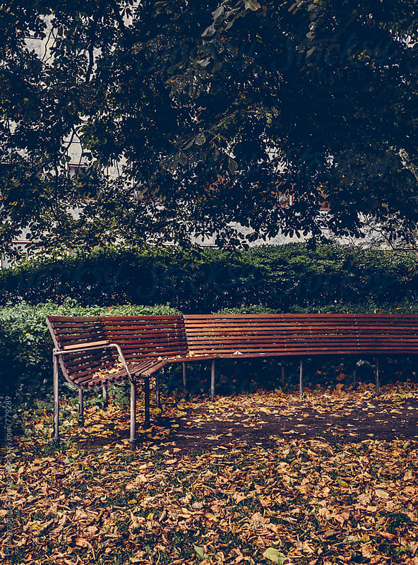 Park bench in the autumn by Photographer Christian B for Stocksy United