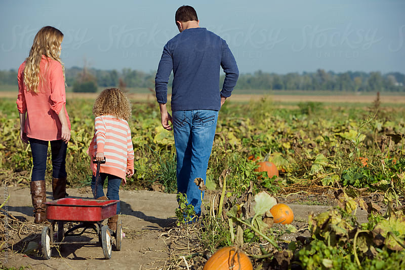 Pumpkins: Family Heading Out To Find Pumpkin by Sean Locke for Stocksy United