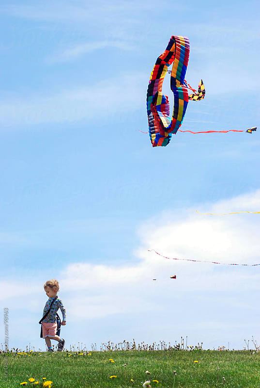 Child walks on grassy lawn with large kites flying in the blue sky above him by Cara Dolan for Stocksy United