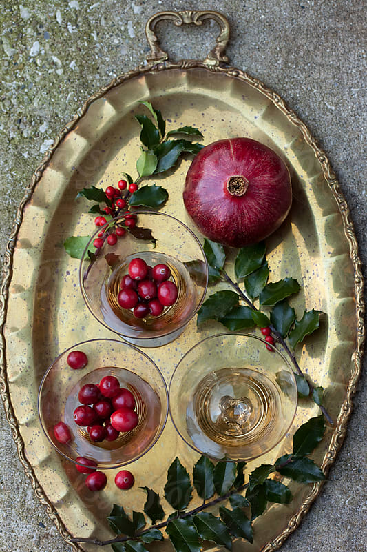 fall fruit by Susan Findlay for Stocksy United