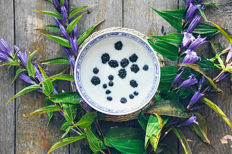 Yogurt with blueberries on a wooden table.  by Marija Savic for Stocksy United