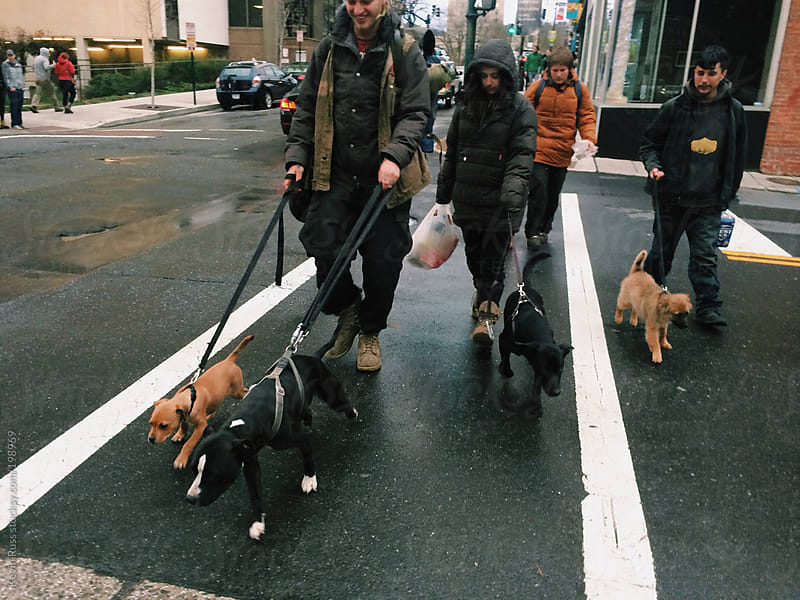 Dirty Kids Walk with Their Dogs by Kevin Russ for Stocksy United