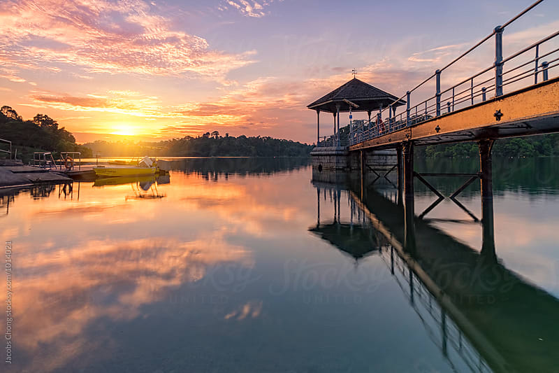 Sunset at MacRitchie Reservoir by Jacobs Chong for Stocksy United