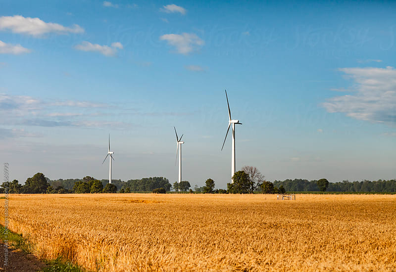 Wind turbines set against a sunny blue sky by Mental Art + Design for Stocksy United