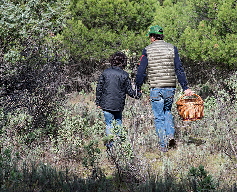 Father and son collecting mushrooms in the forest by Marta Muñoz-Calero Calderon for Stocksy United