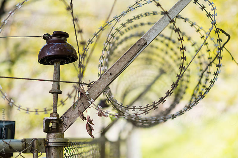 Barbed wire on iron fence and green trees by Lawren Lu for Stocksy United