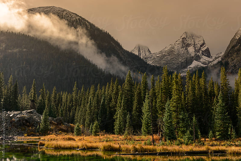 Mist in the morning rays in the mountains by Mick Follari for Stocksy United
