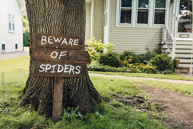 Beware of Spiders sign by a tree by Gabriel (Gabi) Bucataru for Stocksy United
