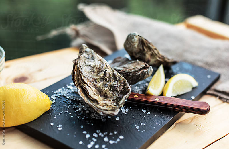 Oysters on a table by Darren Muir for Stocksy United