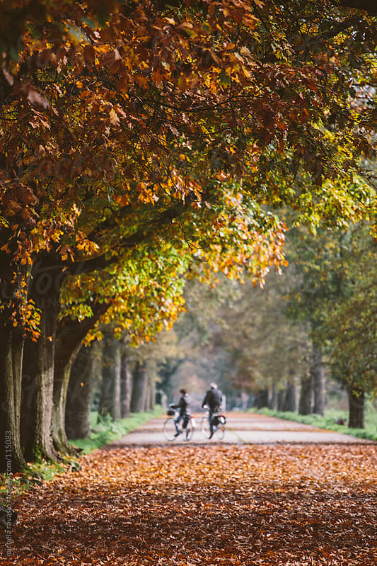 Couple enjoying the park with bicycles in autumn. by michela ravasio for Stocksy United