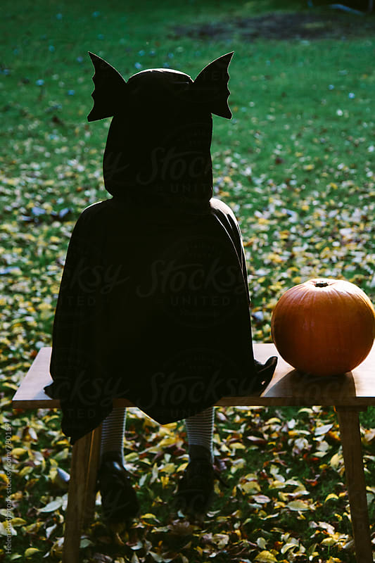 A bat and a pumpkin on a bench by Helen Rushbrook for Stocksy United