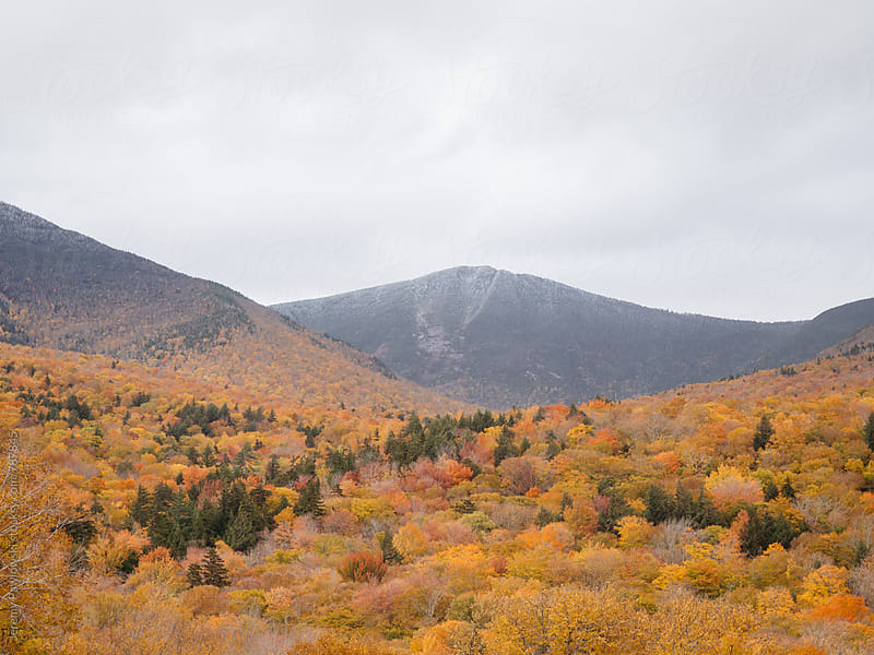 New England foliage on overcast day, mountains in the distance. by Jeremy Pawlowski for Stocksy United
