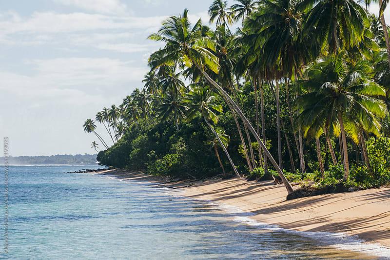 Tropical island beach and sea by Alejandro Moreno de Carlos for Stocksy United