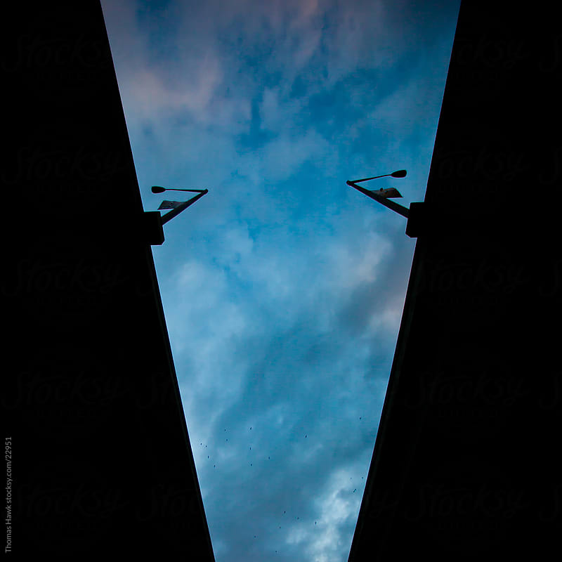 Silhouette Freeway and Signs by Thomas Hawk for Stocksy United