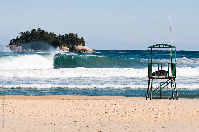 38th Parallel Surfing by Shannon Aston for Stocksy United